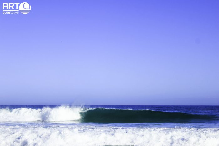 best surfing holidays